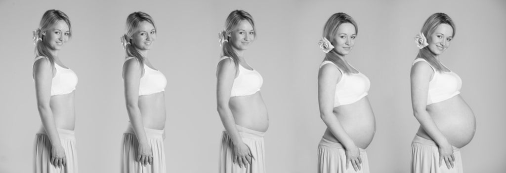 What Can You Expect In Each Trimester?