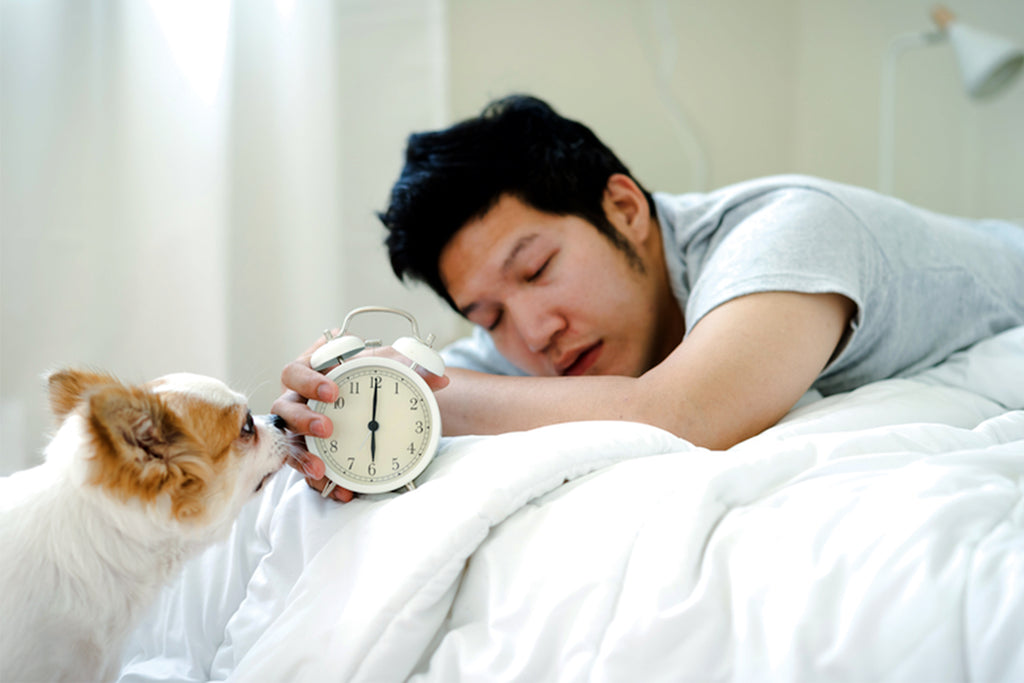 2. Helps fight insomnia