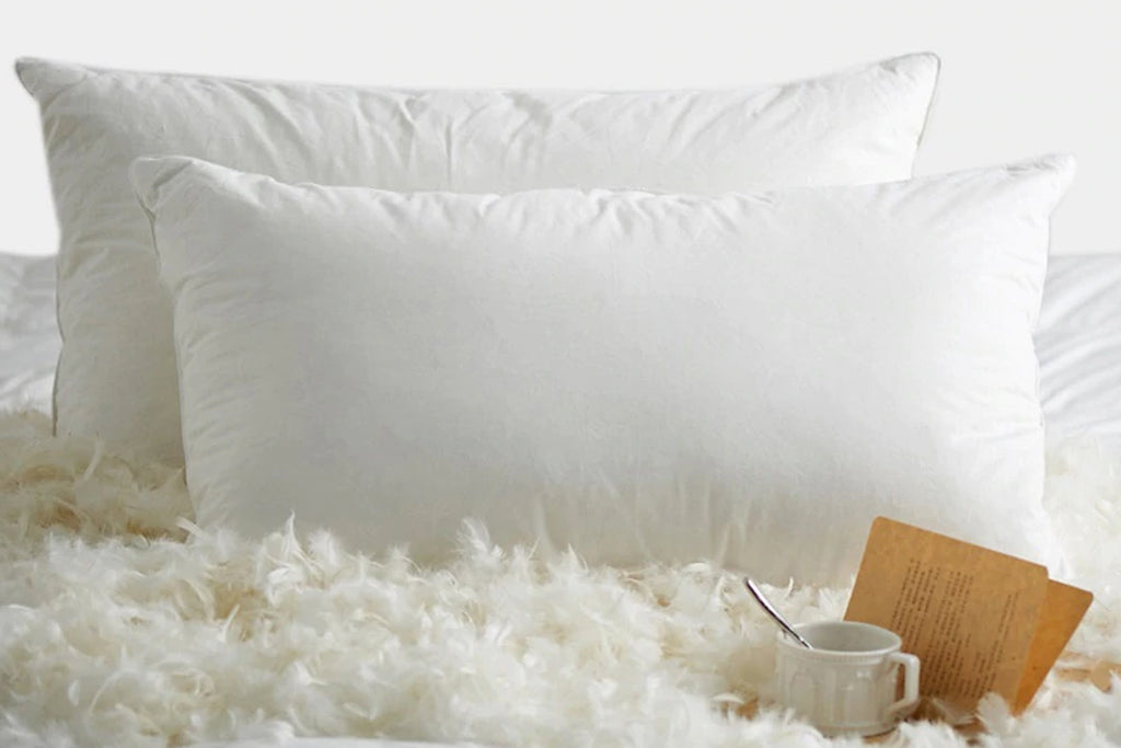 Feather Pillow Filing