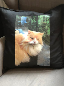 Heat transferred Image onto a 20x20 inch pillow case