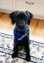 Load image into Gallery viewer, Blue Plaid Personalized Dog Bandana