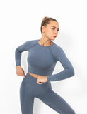 Seamless Gym Crop Top Long Sleeve