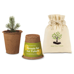 Gemline Sycamore Modern Sprout One For One Tree kit