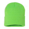 sp12-sportsman-light-green-beanie