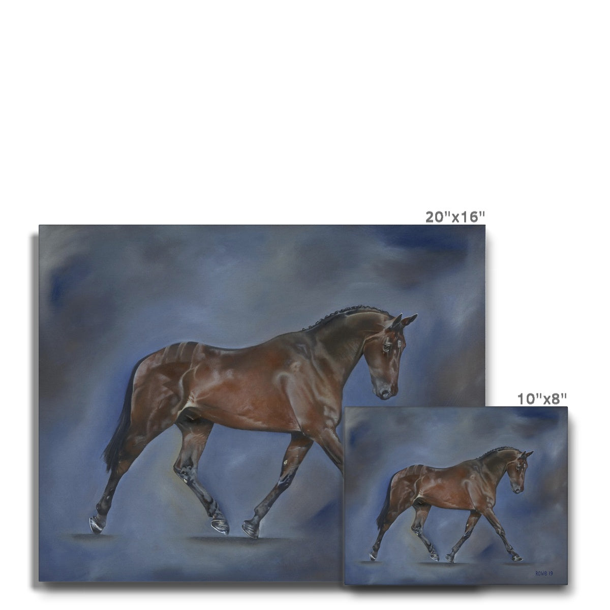 Dressage Canvas