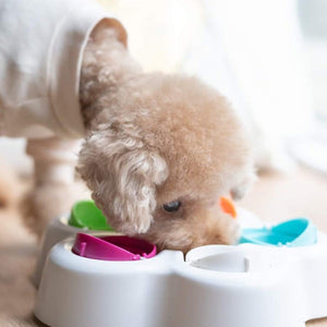 Pet IQ Intelligent Toy Puzzle