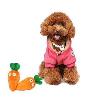 Carrot Squeaky Toy