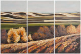 Safavieh Harvest Dreams Wall Art Triptych Assorted and Natural Acrylic Abies Fabric Canvas ART2023A 683726431602