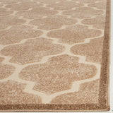 Safavieh Cottage COT928 Power Loomed Rug