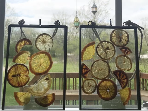 Citrus Sun Catcher