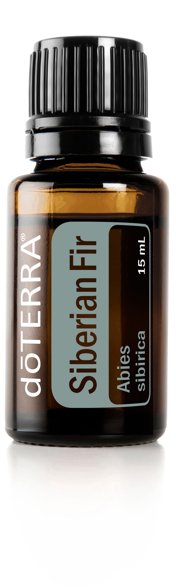 dōTERRA Siberian Fir Single Oil 15ml - CUSTOM AND ESSENTIALS