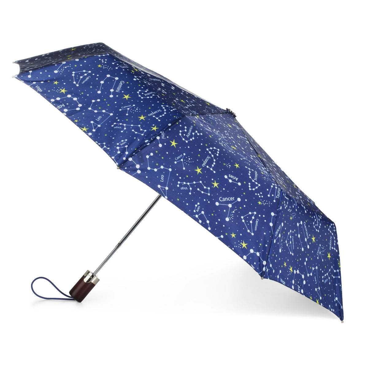 totes Limited-Edition Auto Open Umbrella NeverWet®