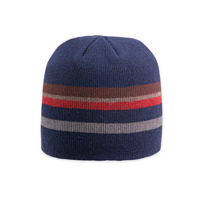 Pistil Men's CLAY Beanie