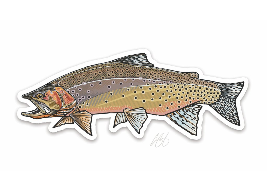 Westslope Cutthroat Trout Decal