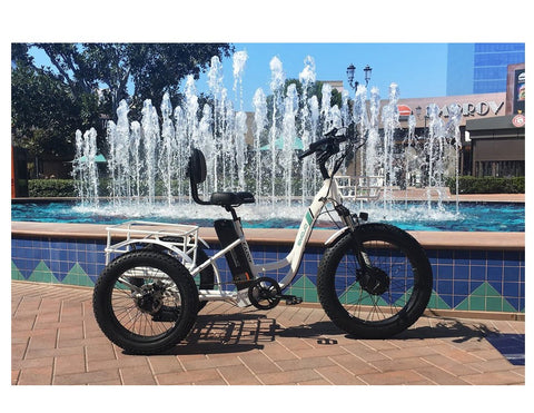 Emojo Caddy PRO Three Wheel Electric Bike Scooter