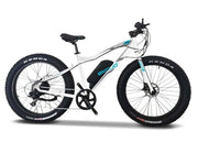 EMOJO Wildcat PRO 750W Fat Tire Electric Mountain Bike with Hydraulic Brakes
