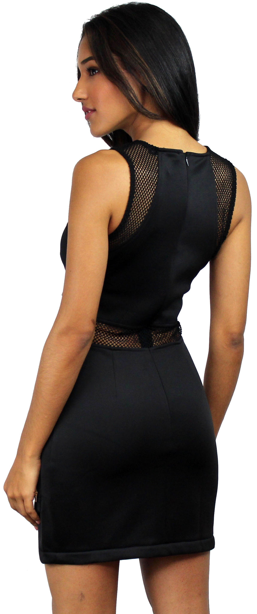 See Thru Mesh Bodycon Black Dress