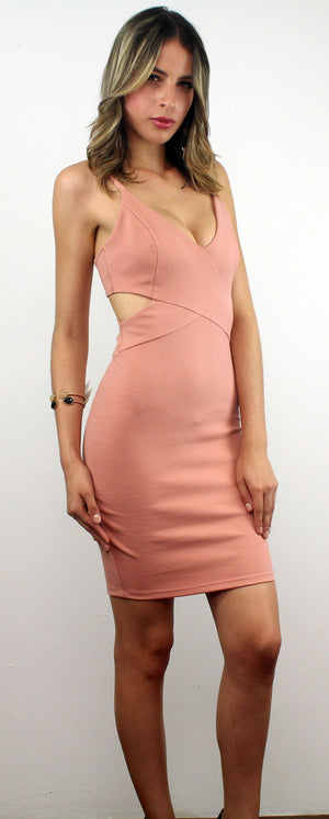 Stand Your Ground Blush Dress
