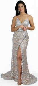The Only Queen of the Night Silver & Nude Gown