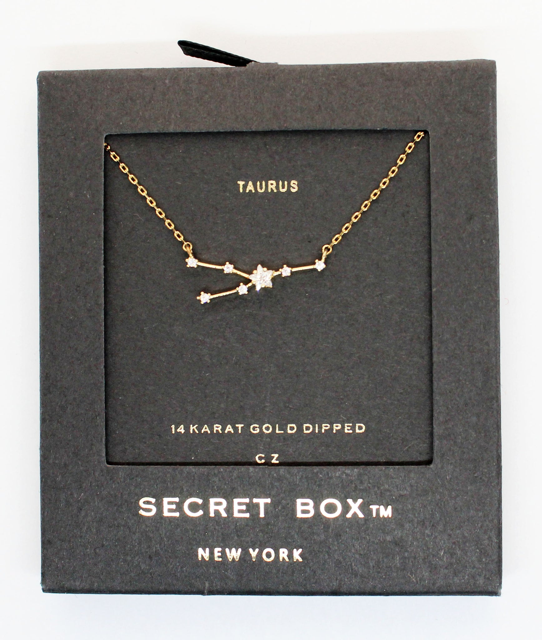 Horoscopes Secret Box Necklace