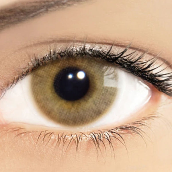 Brown contact lenses (12 months) - ilabar