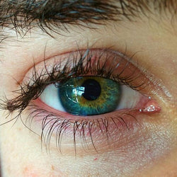 Color mixed artificial eye (12 months) contact lenses