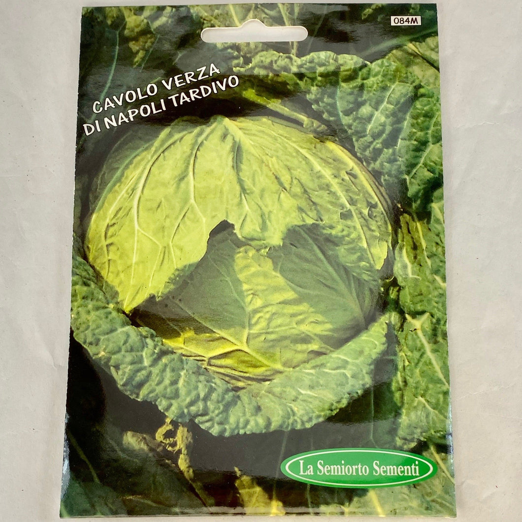 84 - BROCCOLI DE NAPOLI SEEDS