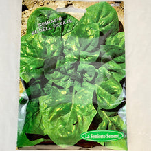 Load image into Gallery viewer, 370 - SPINACH SEEDS