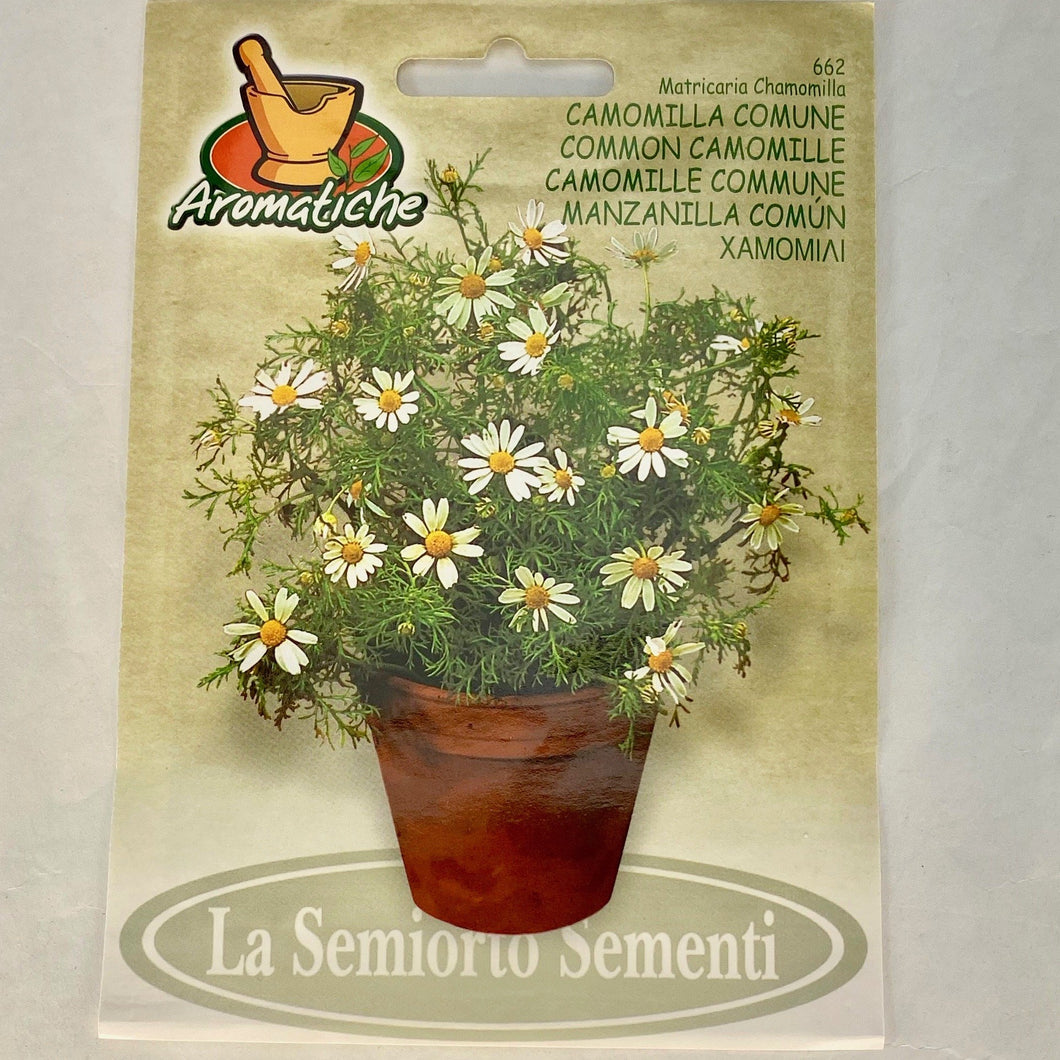 662 - COMMON CAMOMILE SEEDS