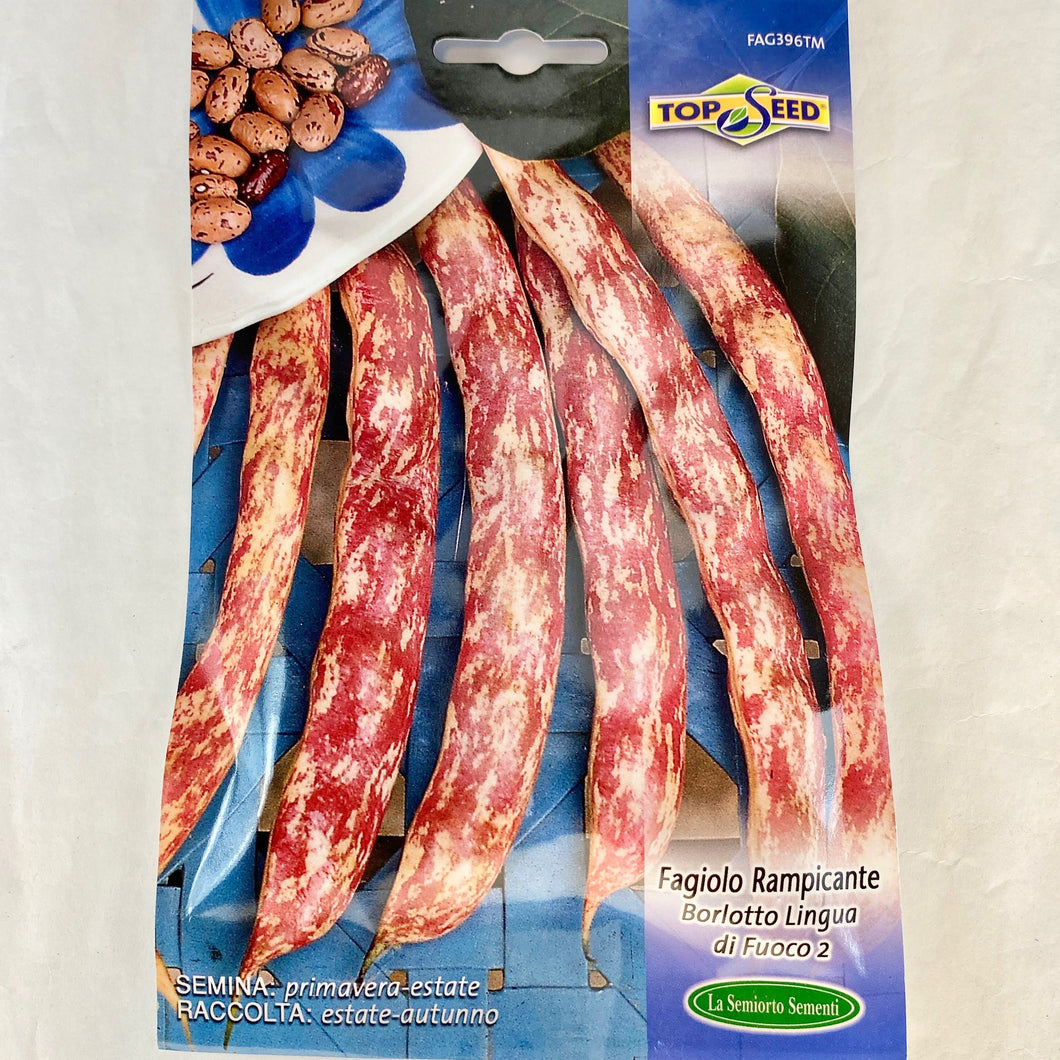 FAG396 - BORLOTTO LINGUA POLE BEAN SEEDS