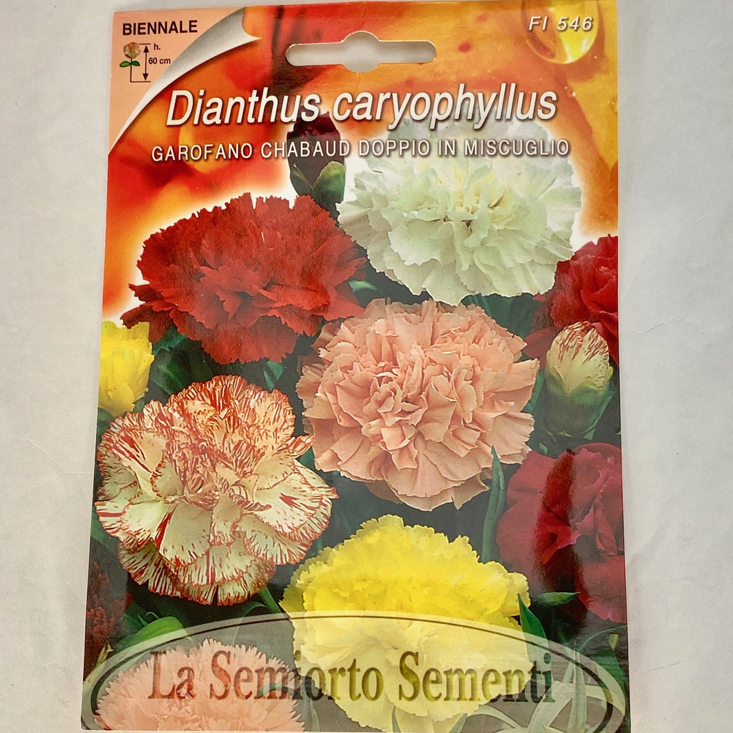 FL546 - CARNATION MIX SEEDS