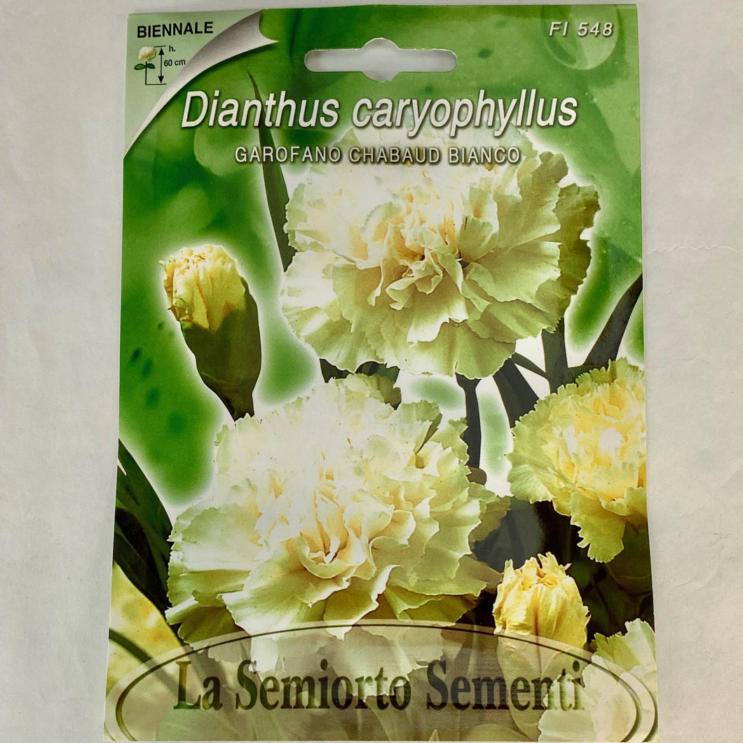 FL548 - WHITE CARNATION SEEDS