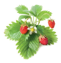 Load image into Gallery viewer, Strawberry Hanging Basket