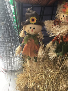 Small Scarecrow Girl