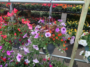 RETRO HANGING BASKETS