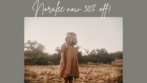 Shop Noralee at Barn Chic Boutique - lifestyle photo of little girl wearing Noralee Maddie Dress in Golden standing in field