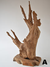 Load image into Gallery viewer, Abstract Wood Sculpture On Stand - Small