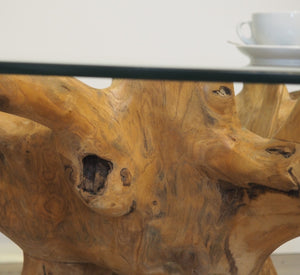 Round reclaimed teak root coffee table, close view of root.
