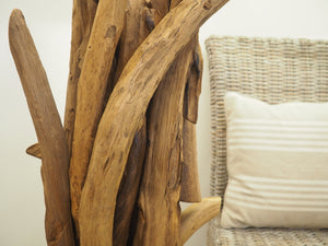 Teak Root Floor Lamp - Ace