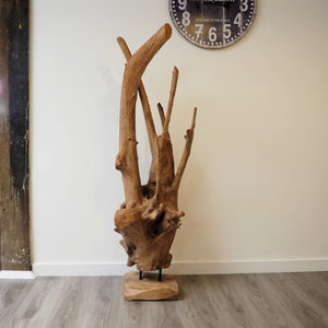 Teak Root On Stand 150cm