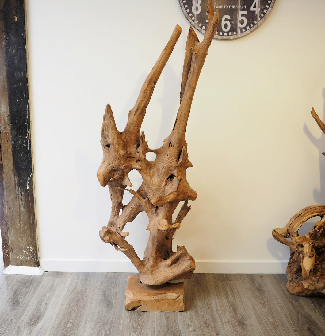 Teak Root On Stand 180cm