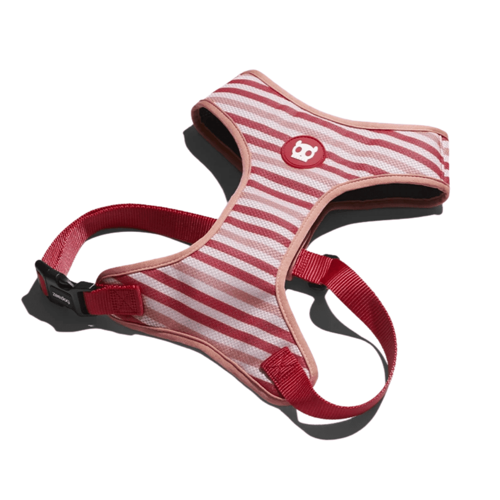 ZeeDog Dog Air Mesh Harness - Peppermint