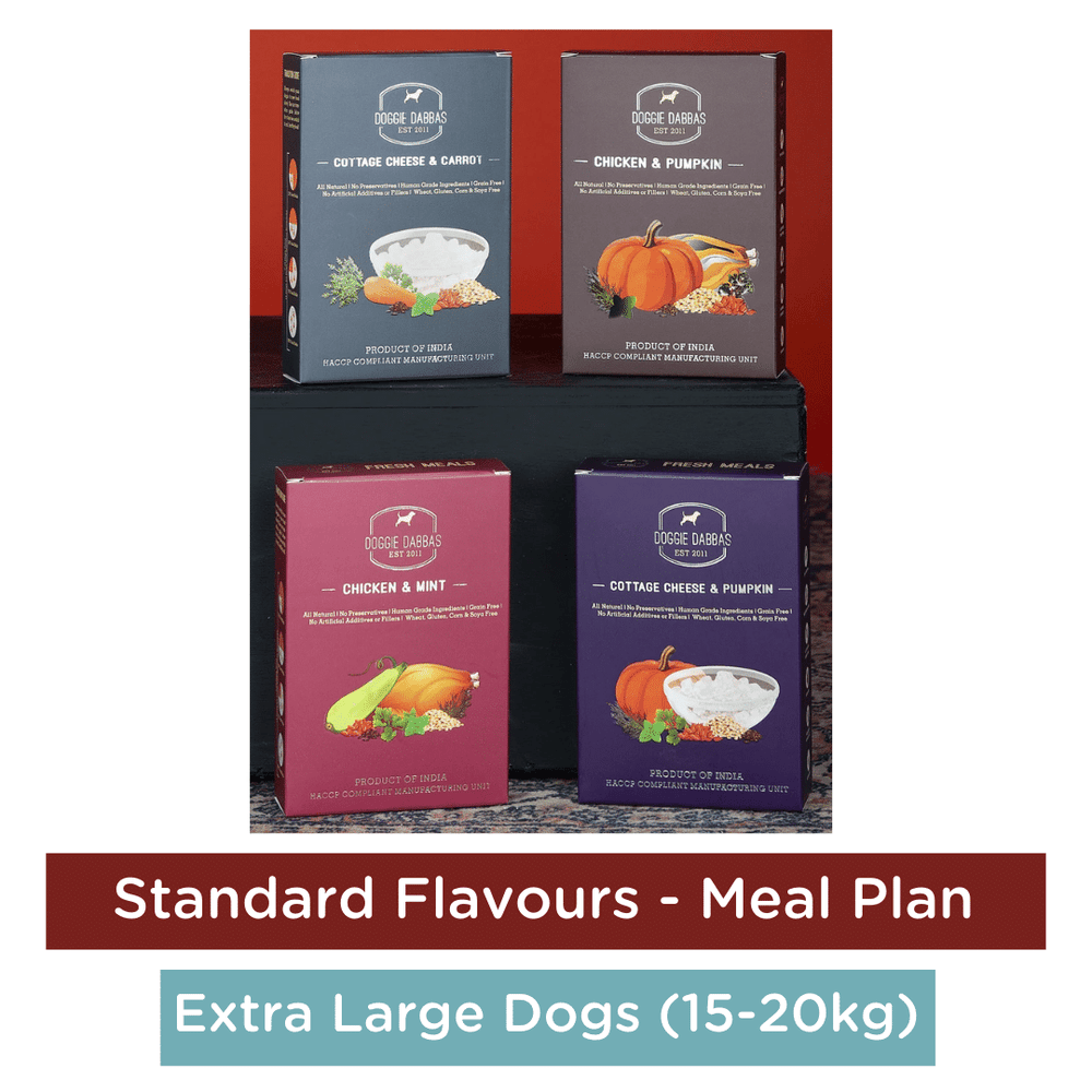 Doggie Dabbas Fresh Meals - Meal Plan for Extra Large Dogs (25-32kg) - Standard Flavours