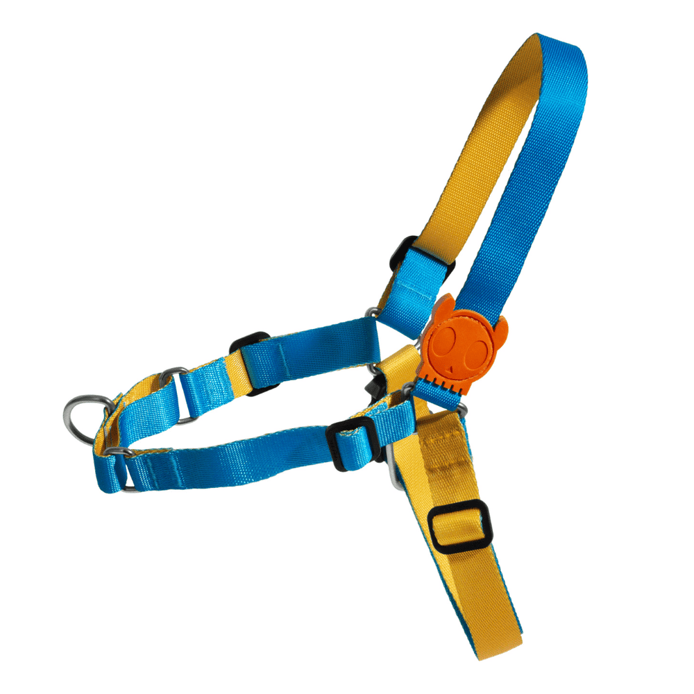 ZeeDog Dog Soft Walk Harness - Aziza