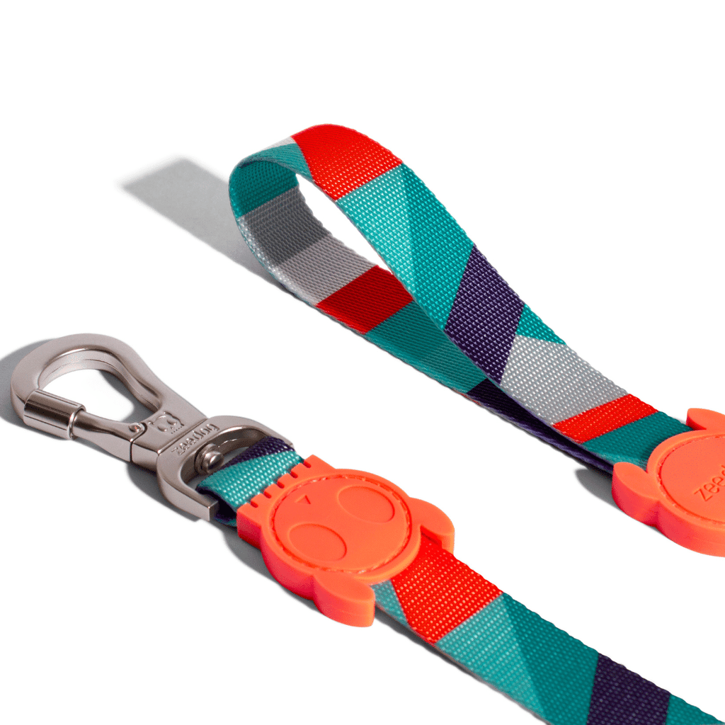 ZeeDog Dog Leash - Ella