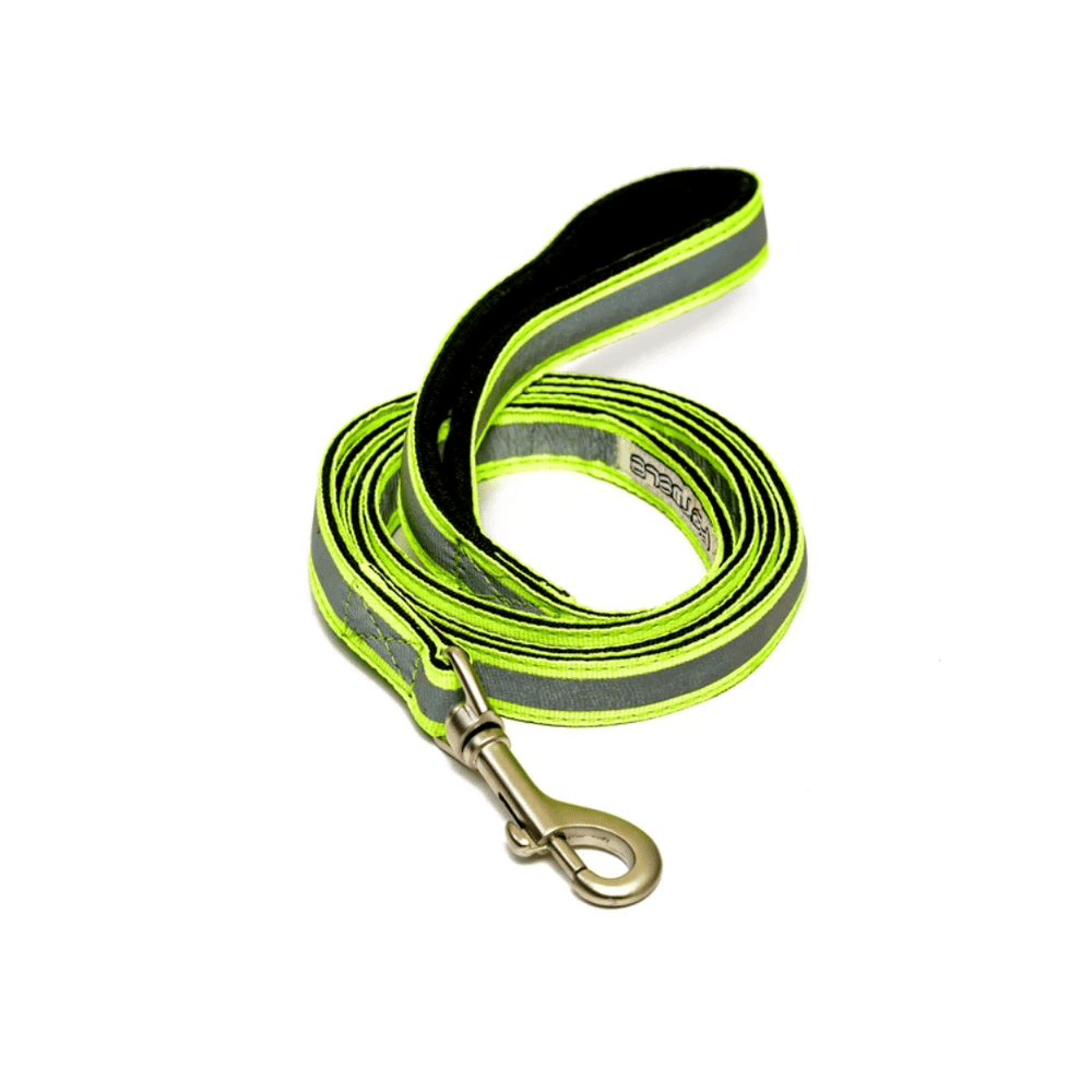 Petwale Leash - Reflective Green