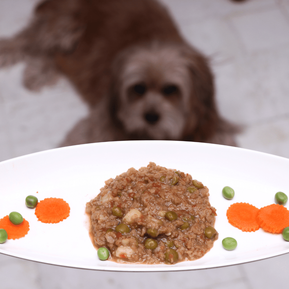 Fresh For Paws - Vegetable Stew (100g)
