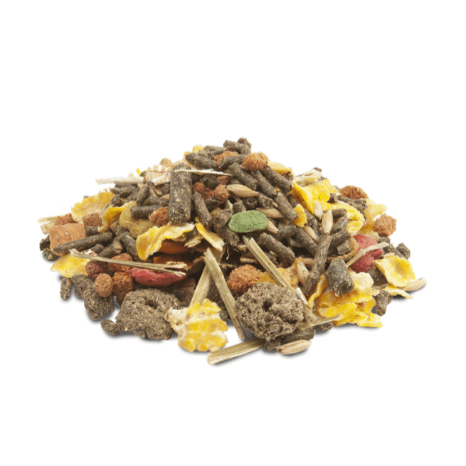 Versele Laga Crispy Muesli for Guinea Pigs