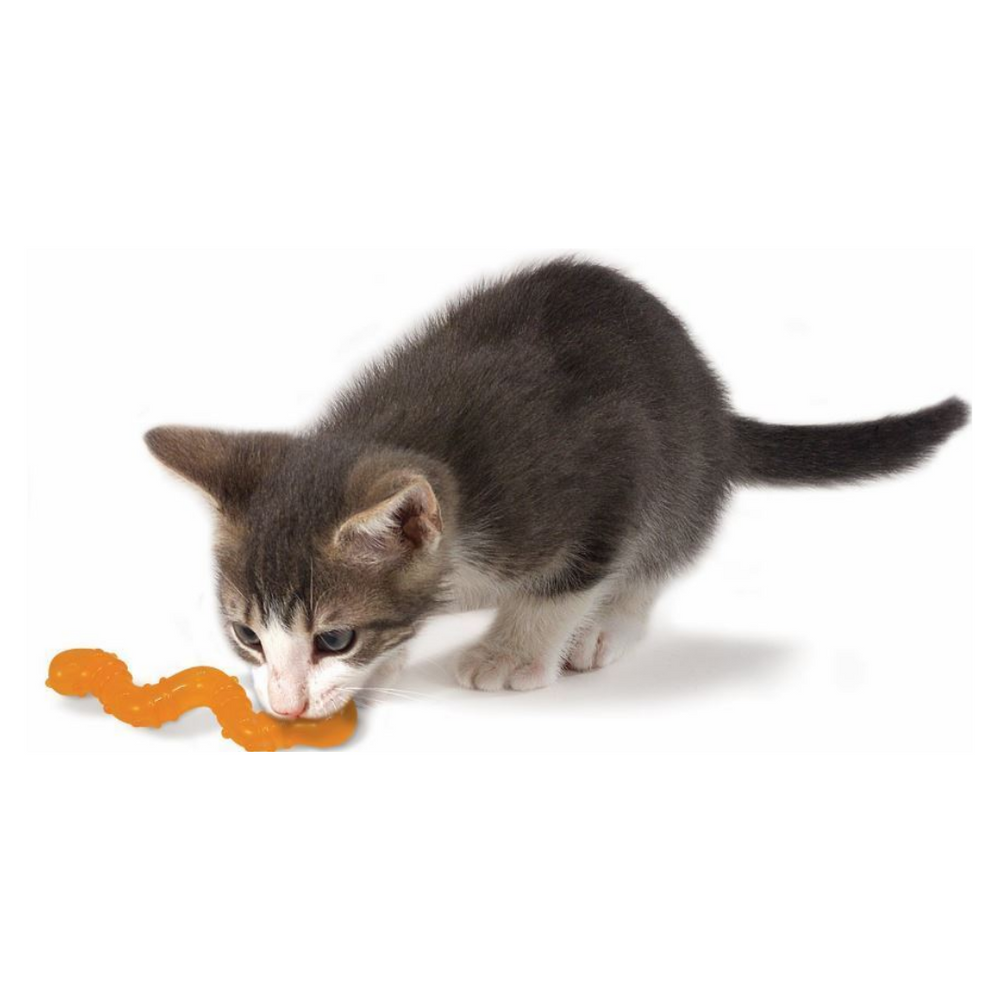 Petstages Cat Toys - OrkaKat Wiggle Worm