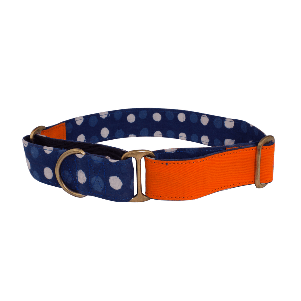Petwale Martingale Collar - Orange and Blue